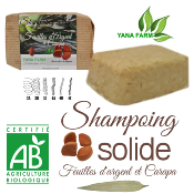 Shampooing solide feuille d'argent carapa maripa Bio